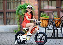Xe đạp trẻ em Royal Baby MgDINO RB14-B21