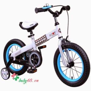 Xe đạp Royal Baby Buttons RB-15H