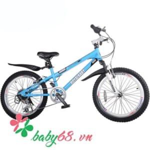 Xe đạp trẻ em RoyalBaby 20B-6S 20inch