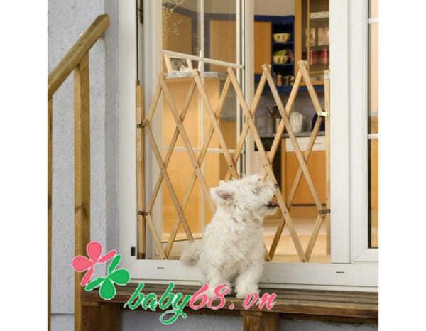 Rào chắn cửa Coco